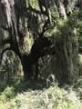 130 Reynolds Island Trail - Photo 20