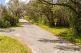 Magnolia Ave - Photo 6