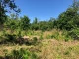 Forest Ridge Rd - Photo 6