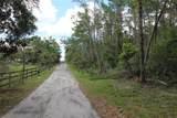 5135 Blueberry Acres - Photo 6
