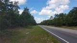 County Road 445A - Photo 19