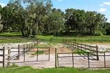 1328 Spring Garden Ranch Road - Photo 49