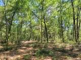 1625 Hidden Woods Way - Photo 2