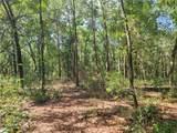 1625 Hidden Woods Way - Photo 4