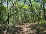 1625 Hidden Woods Way - Photo 5
