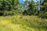 Indian Mound Trail - Photo 1
