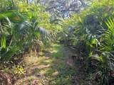 Indian Mound Trail - Photo 12