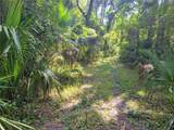Indian Mound Trail - Photo 13
