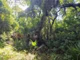 Indian Mound Trail - Photo 14