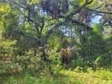 Indian Mound Trail - Photo 15