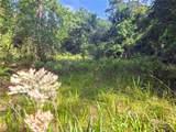 Indian Mound Trail - Photo 16