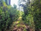 Indian Mound Trail - Photo 17