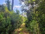 Indian Mound Trail - Photo 18