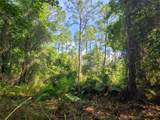 Indian Mound Trail - Photo 19
