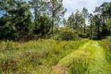 Indian Mound Trail - Photo 4