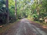Indian Mound Trail - Photo 5
