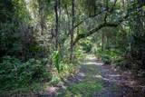 Indian Mound Trail - Photo 7