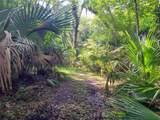 Indian Mound Trail - Photo 9