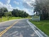 1632 Shell Harbor Road - Photo 11