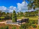 32924 Estate Garden Drive - Photo 8