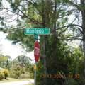 5388 Montego Lane - Photo 13
