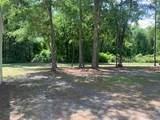 597 Whitetail Circle - Photo 3