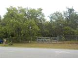 10304 Woodland Drive - Photo 16