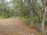 10304 Woodland Drive - Photo 3