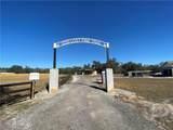 2230 Lost Pine Trail - Photo 3