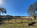 2230 Lost Pine Trail - Photo 47