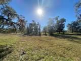 2230 Lost Pine Trail - Photo 51