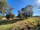 2230 Lost Pine Trail - Photo 63