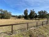 2230 Lost Pine Trail - Photo 66