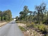 12227 Eskimo Curlew Road - Photo 3