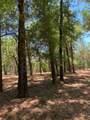 11900 Pine Oak Terrace - Photo 2