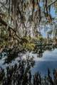 5910 River Road - Photo 45