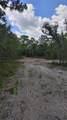 10053 Kitten Trail - Photo 19