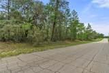 6184 El Dorado Lane - Photo 13