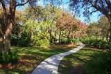 446 Palm Tree Drive - Photo 23