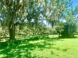 4834 Myakka Valley Trl - Photo 11