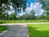 4834 Myakka Valley Trl - Photo 12
