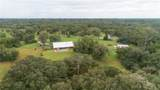 4834 Myakka Valley Trl - Photo 7