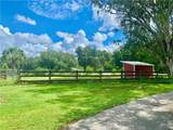 4834 Myakka Valley Trl - Photo 77