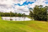 5376 White Ibis Drive - Photo 33
