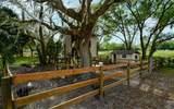 7332 Palomino Trail - Photo 43