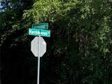239 Ramblewood Street - Photo 13