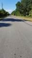 13428 Chamberlain Boulevard - Photo 5
