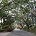 9 Dominica Drive - Photo 3