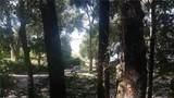 Eldorado Lake Drive - Photo 5