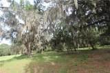 Big Pine Island Drive - Photo 1